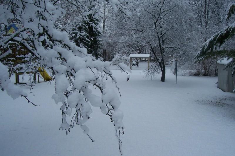 Big_snow_jan1_005_2
